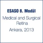 ESASO 8. Modül, Ankara 2013